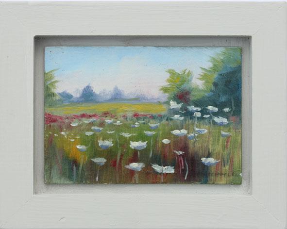 mini-landscapes-28
